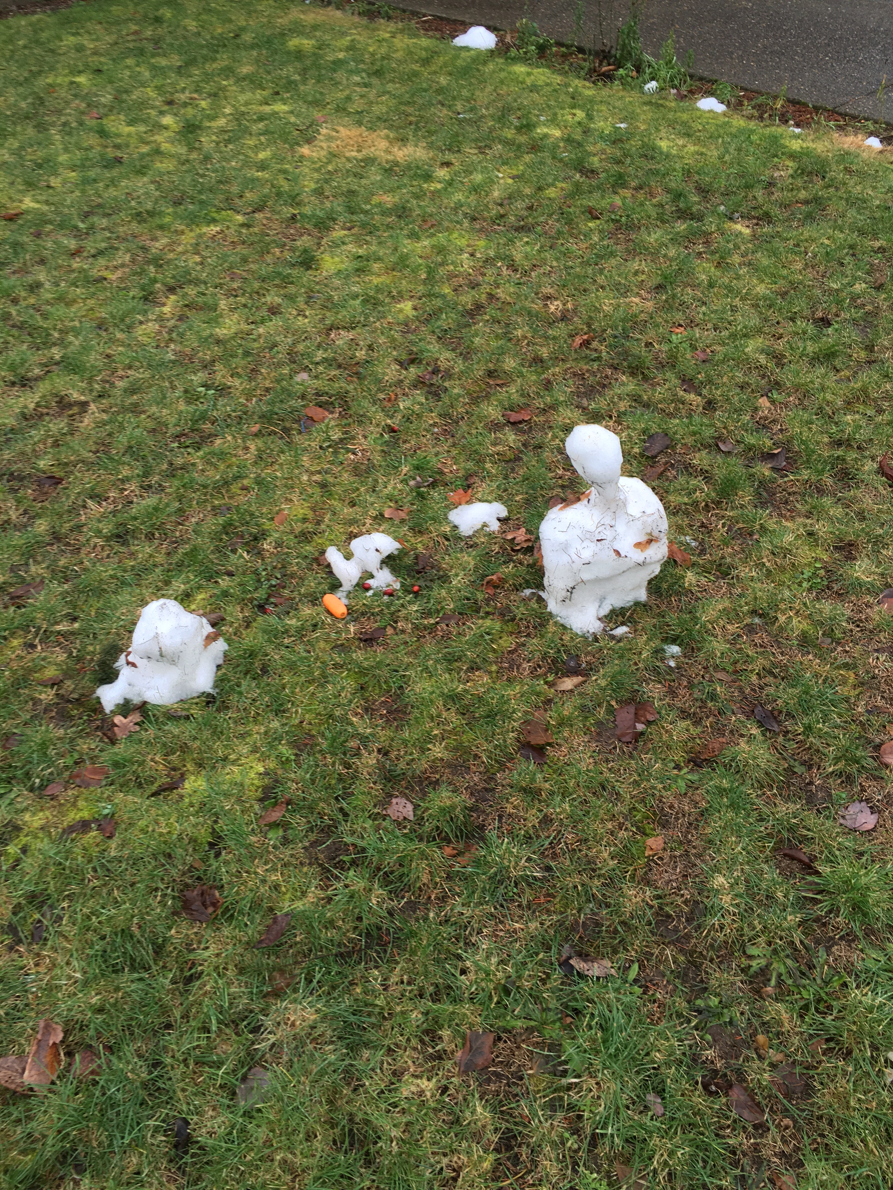 A mostly melted snowman sits in an otherwise snowless yard near a half-eaten carrot.