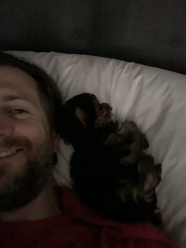 A tiny black and brown Yorkie puppy sits on a pillow next to a smiling Nick